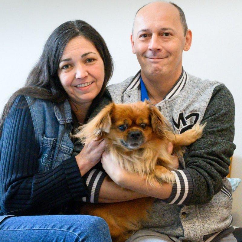 Produkte Spenden | Haus St. Josef | Schenk Futter für einen Hund im Obdachlosenhaus | Caritas Wirhelfen.shop